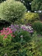 gardening-gallery-4